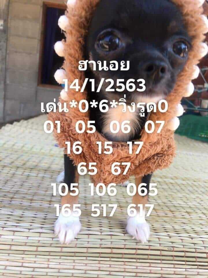 หวยฮานอย 14/1/63 ชุดที่10