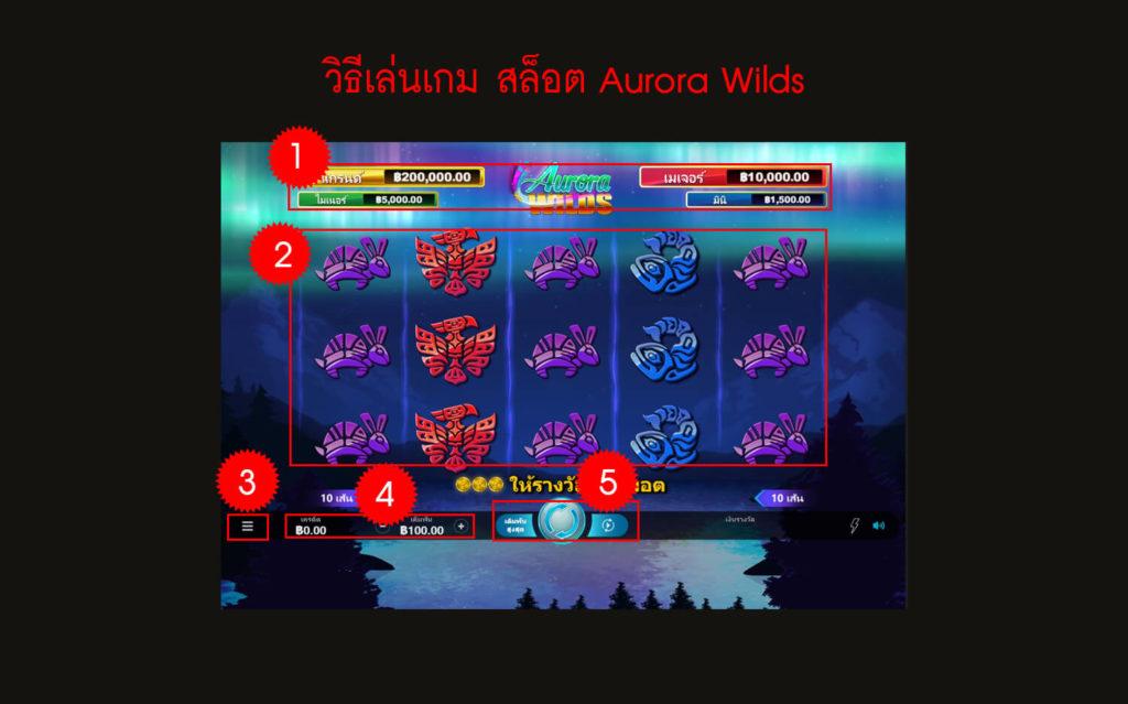 กฎกติกา วิธีเล่นเกม Aurora Wilds Slot