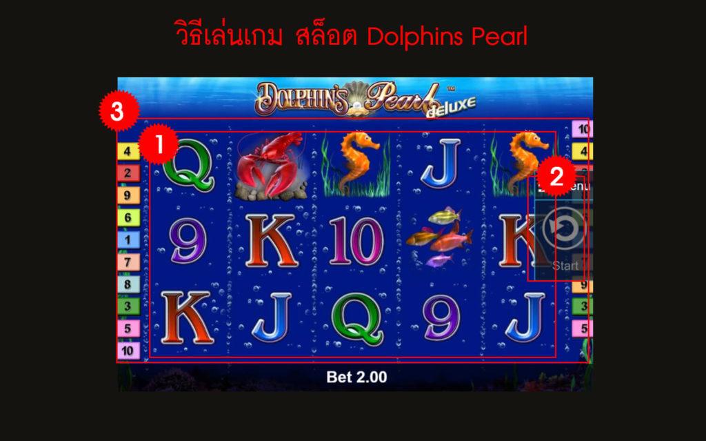 กฎกติกา วิธีเล่นเกม สล็อต Dolphins Pearl