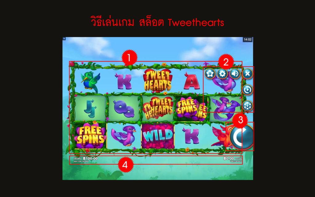 กฎกติกา วิธีเล่นสล็อต Tweethearts Slot